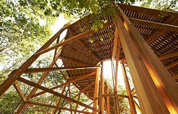 Matériaux bois technologie Durapin