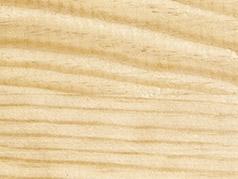 Le Pin - Originaire de France ou de Pologne - Vivre en Bois