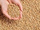Granulés de bois : pellets